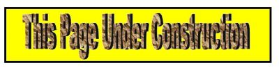 Const Banner